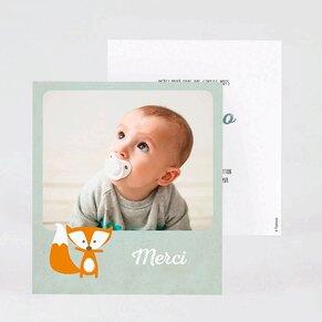 carte-remerciements-naissance-renard-TA0517-1700006-02-1