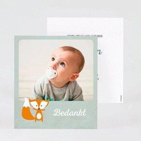 geboorte-bedankkaartje-mintgroen-met-vosje-en-foto-TA0517-1700006-03-1