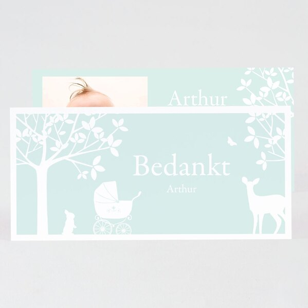 geboorte-bedankkaartje-muntgroen-silhouet-bos-met-foto-TA0517-1700017-03-1