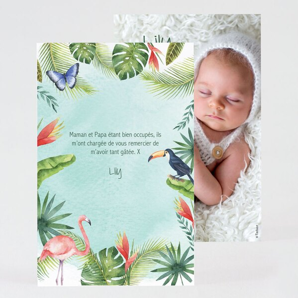 carte-de-remerciement-naissance-foret-tropicale-TA0517-2000002-02-1