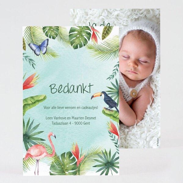 tropisch-geboorte-bedankkaartje-TA0517-2000002-03-1