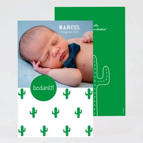 bedankkaartje-met-foto-en-cactussen-TA0517-2000003-03-1