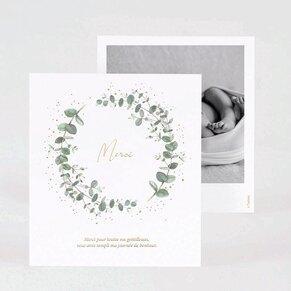 carte-de-remerciement-naissance-eucalyptus-et-dorure-TA0517-2000006-02-1