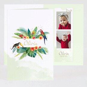 kleurrijk-jungle-bedankkaartje-met-goudfolie-TA0517-2000013-03-1