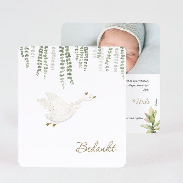 bedankkaartje-met-eucalyptus-TA0517-2000025-03-1