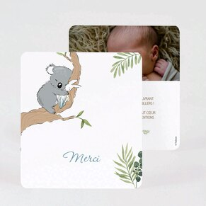 carte-de-remerciement-naissance-famille-koalas-TA0517-2000026-02-1