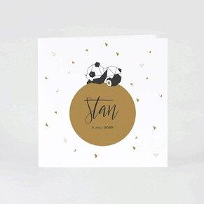 geboortekaartje-met-trendy-panda-TA05500-1800008-03-1
