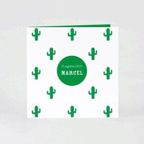 geboortekaartje-met-cactussen-TA05500-2000003-03-1