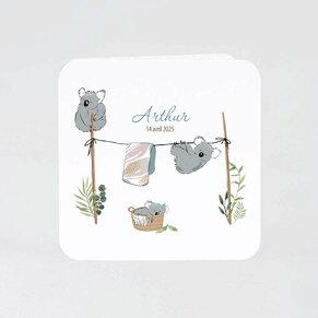 faire-part-naissance-famille-koalas-TA05500-2000078-02-1