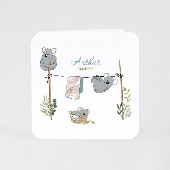 schattig-getekend-geboortekaartje-met-koala-beertjes-TA05500-2000078-03-1