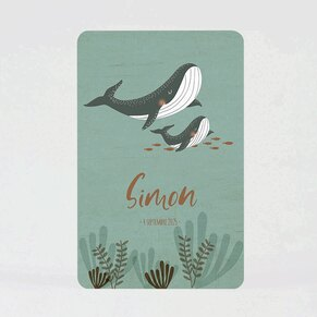 faire-part-naissance-maman-et-bebe-baleine-TA05500-2000095-02-1
