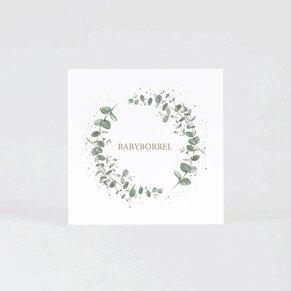 uitnodiging-babyborrel-met-eucalyptus-TA0557-2000003-03-1