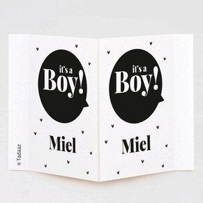 geboortebord-raam-it-s-a-boy-TA05997-2100012-03-1