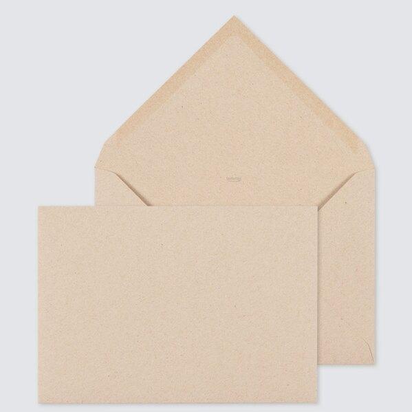bruine-eco-enveloppe-22-9-x-16-2-cm-TA09-09010213-03-1
