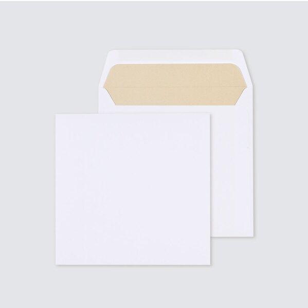 vierkante-enveloppe-met-gouden-voering-17-x-17-cm-TA09-09091501-03-1