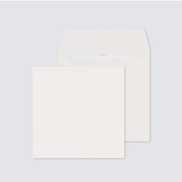 ecru-zelfklevende-enveloppe-met-rechte-klep-17-x-17-cm-TA09-09209503-03-1
