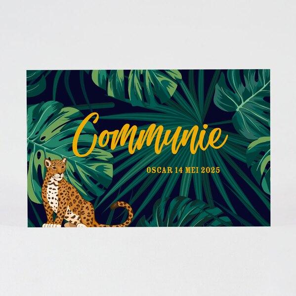 communiekaart-in-junglethema-met-panter-TA1227-1900001-03-1