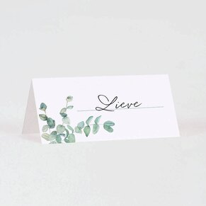 tafelkaartje-met-eucalyptus-TA1322-2100002-03-1