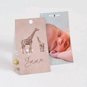contenant-a-dragees-bapteme-girafes-elegantes-TA1575-2000024-02-1