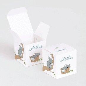 kubusdoosje-met-koala-TA1575-2000097-03-1