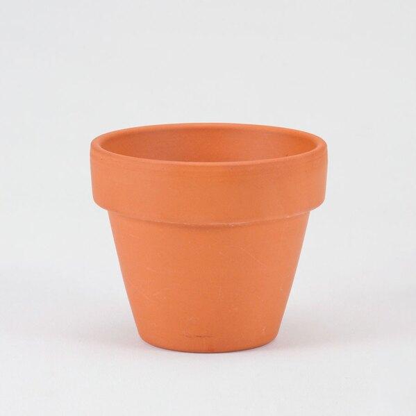 origineel-trouwbedankje-mini-bloempotje-TA182-117-03-1