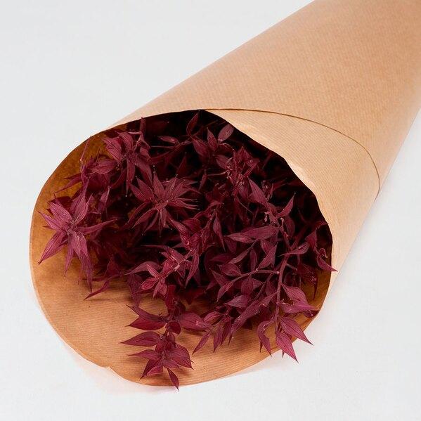 fleurs-sechees-mariage-ruscus-framboise-TA182-171-02-1
