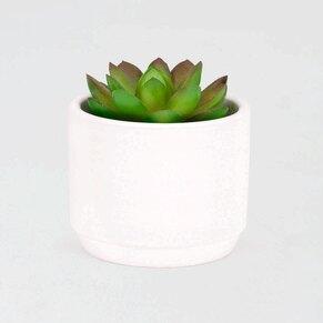 keramieken-bloempotjes-mini-wit-TA382-190-03-1