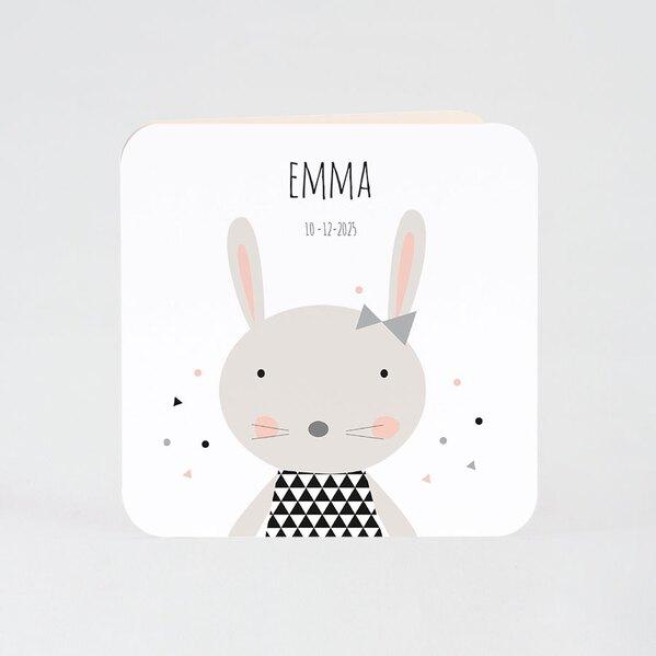 schattige-geboortekaart-lief-klein-konijntje-buromac-507034-TA507-034-03-1
