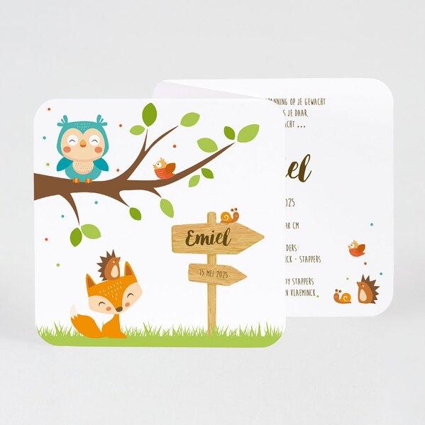 vrolijk-drieluik-geboortekaartje-met-bosdiertjes-buromac-507085-TA507-085-03-1