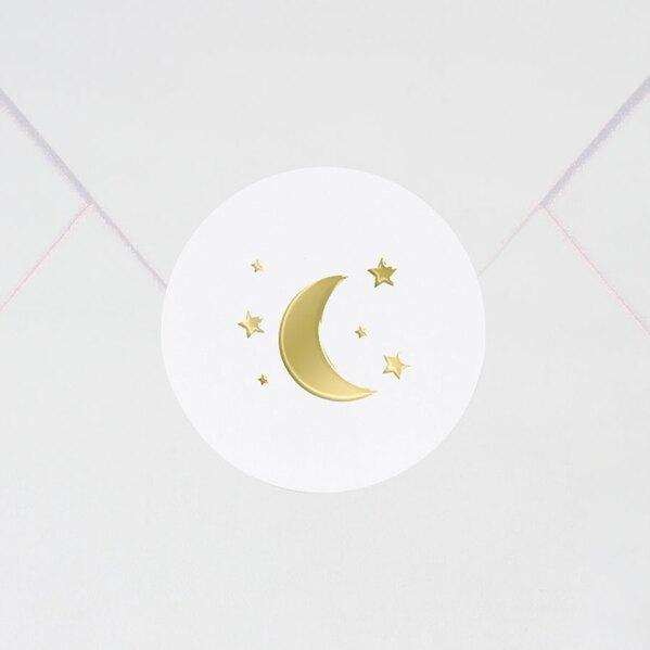 sluitzegel-met-goudfolie-maan-en-sterren-3-7-cm-TA571-124-03-1