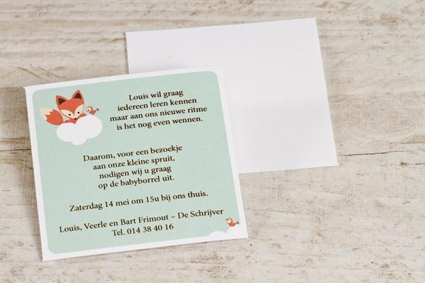 uitnodiging-babyborrel-vosje-TA575-302-03-1