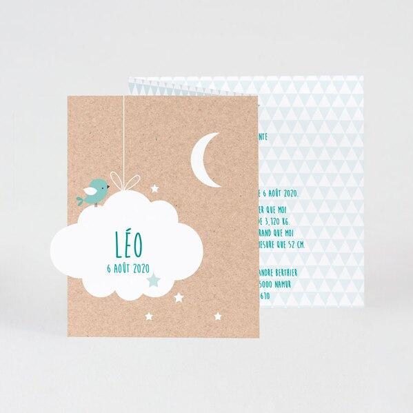 faire-part-naissance-vert-douce-nuit-buromac-586074-TA586-074-02-1