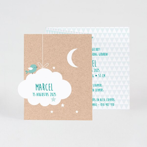 drieluik-fotokaart-eco-met-wolkje-en-muntgroene-ruitjes-buromac-586074-TA586-074-03-1