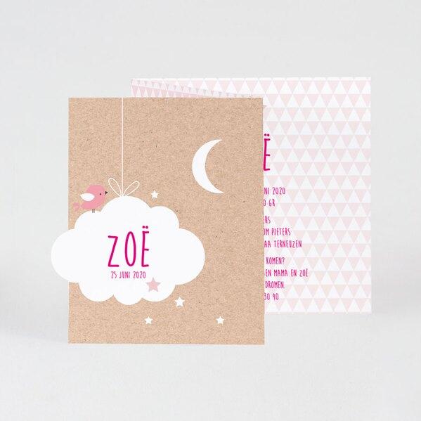 drieluik-fotokaart-eco-met-wolkje-en-roze-ruitjes-buromac-586075-TA586-075-03-1