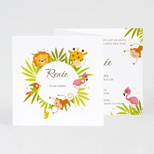 schattig-geboortekaartje-met-kleurrijke-dieren-en-foto-buromac-589039-TA589-039-03-1
