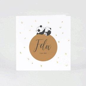 geboortekaartje-met-panda-op-bol-met-goudfolie-buromac-589096-TA589-096-03-1