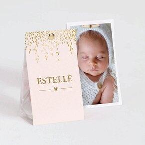 etui-a-dragees-naissance-rose-et-laurier-dore-TA749-001-02-1