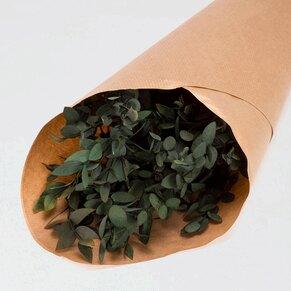 fleurs-sechees-bapteme-eucalyptus-pavifolia-TA782-177-02-1