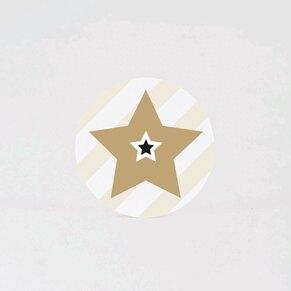 sluitzegel-gouden-ster-TA876-105-03-1
